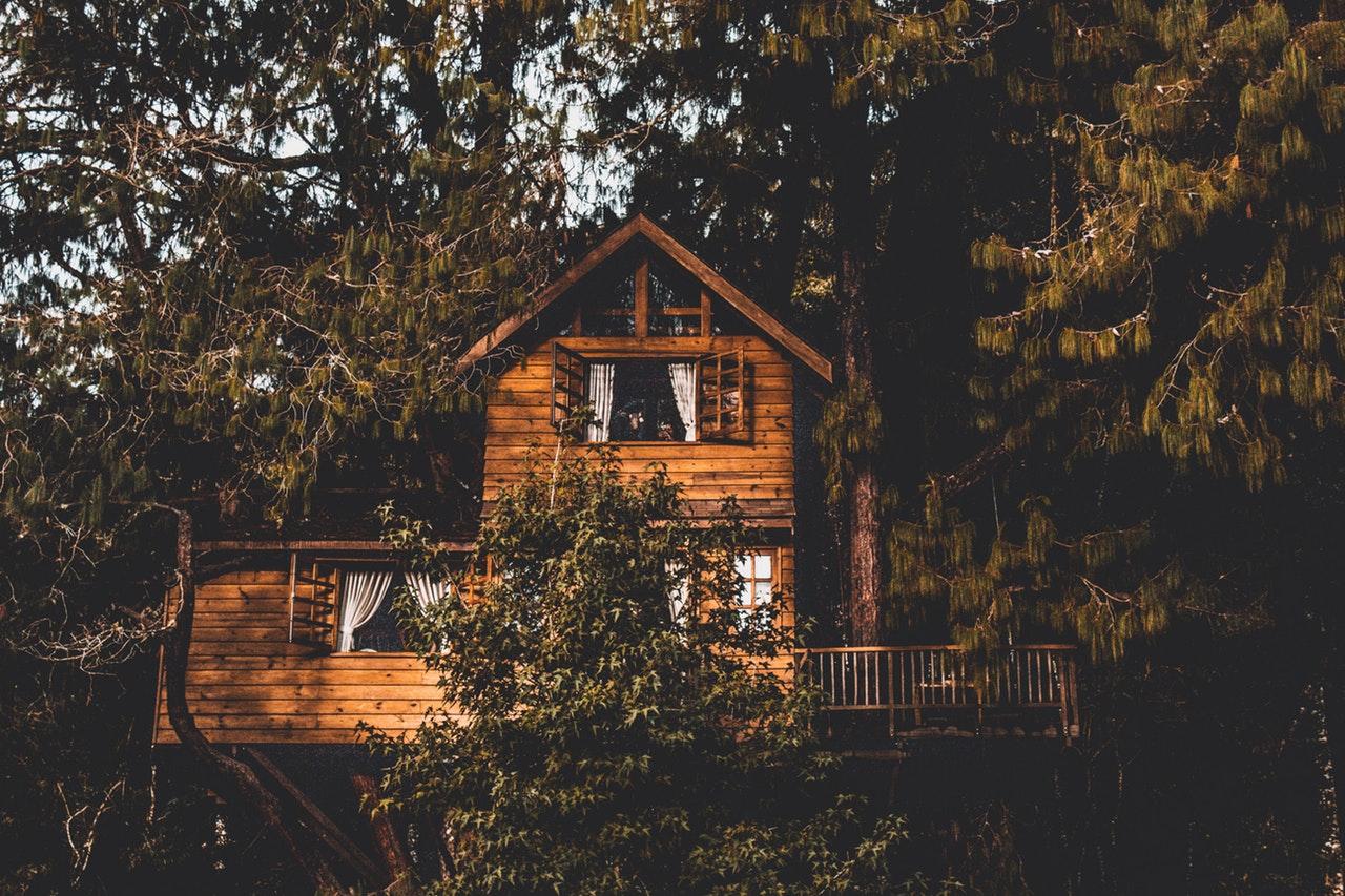Brunt træhus ved siden af træer